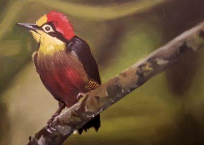 Rachael bird painting